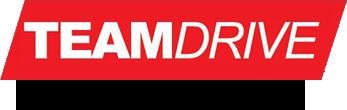 logo-teamdrive-flavio-alonso_alt