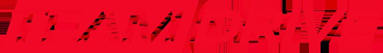 Logo-Team-Drive-3